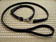 Tracking leash