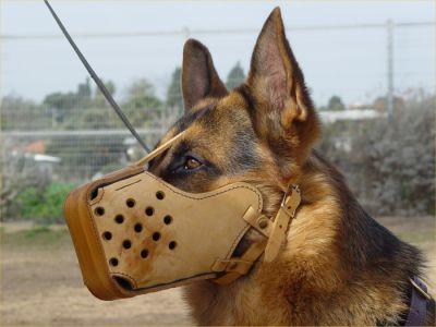 dog leather muzzle muzzles training shepherd german k9 equipment m5